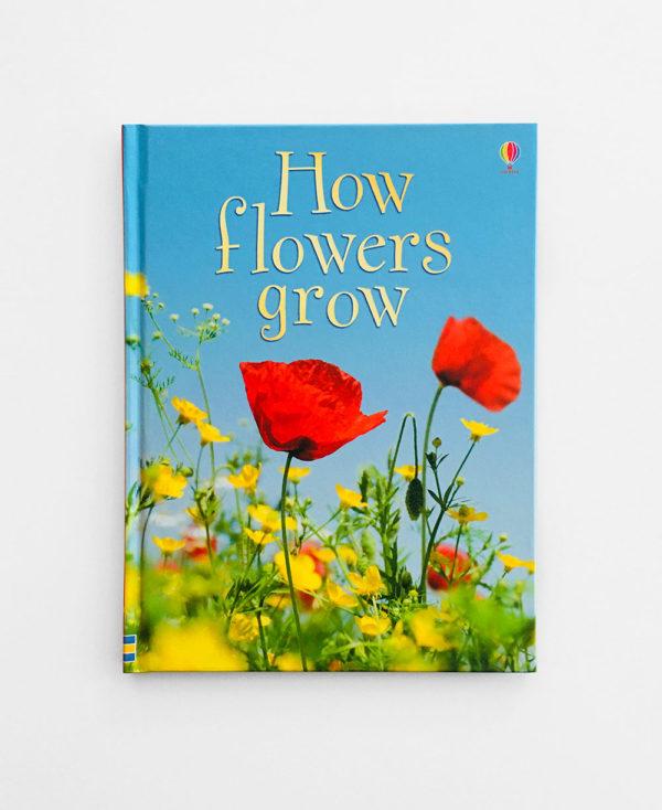 HOW FLOWRERS GROW
