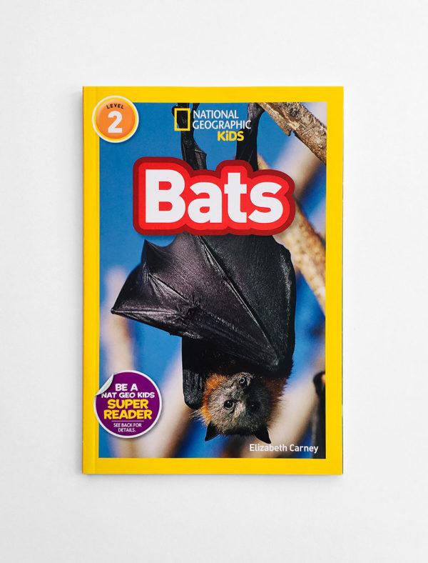 NAT GEO #2: BATS