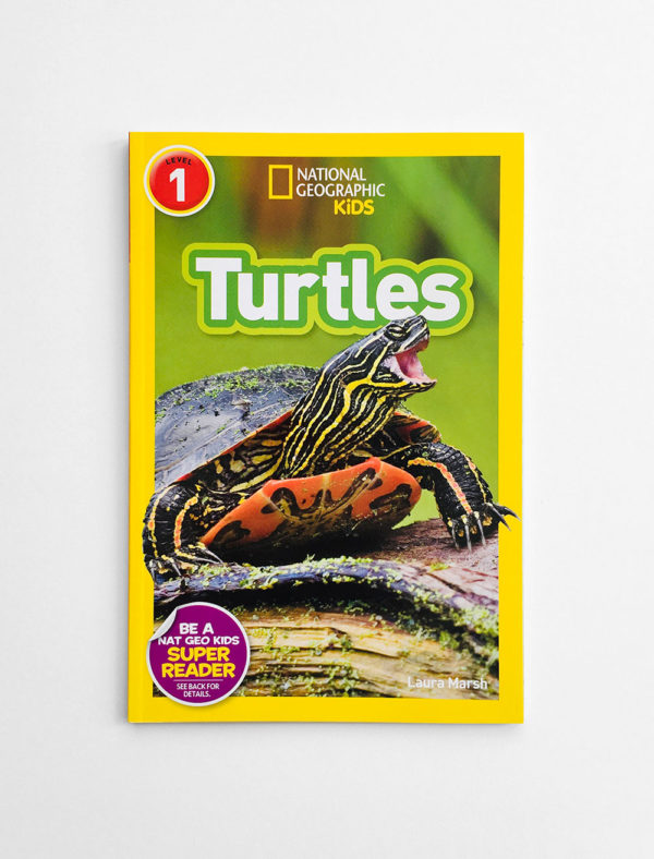 NAT GEO #1: TURTLES